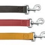 Design your own Personalised dog lead