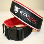 Ezy dog neo dog collar