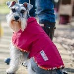 red waxed cotton dog coat