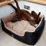 reversible waterproof dog bed