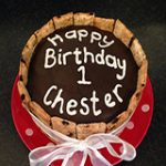 Personalised dog cakes
